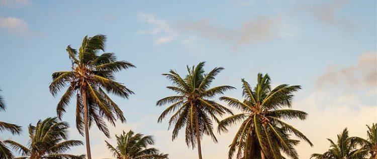 devenir infirmier liberal Mayotte